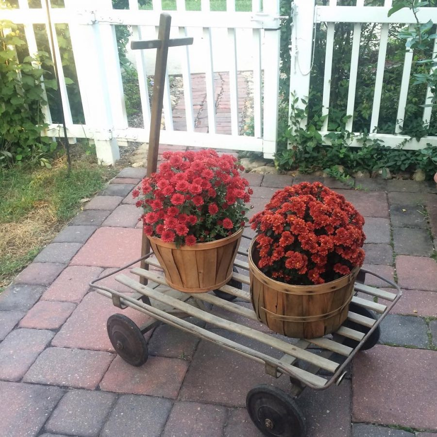Vintage cart filled with mums Yep its Fall farmhousestyle vintagedecorhellip