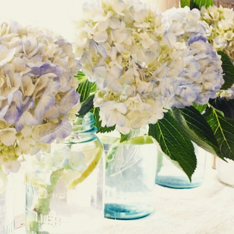 Hydrangeas and Blue Mason Jars