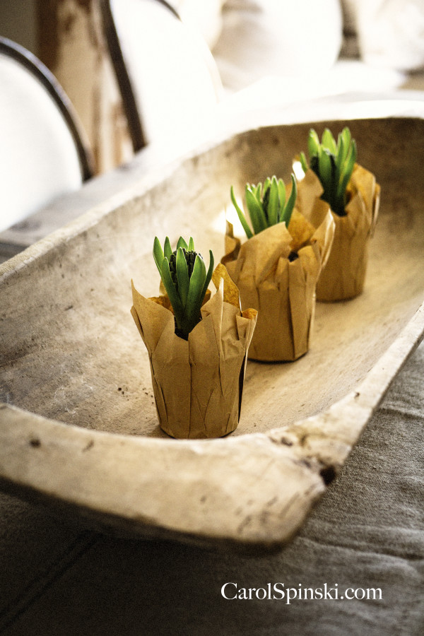 Spring bulbs wrapped in brown paper setting inside a rustic dough bowl